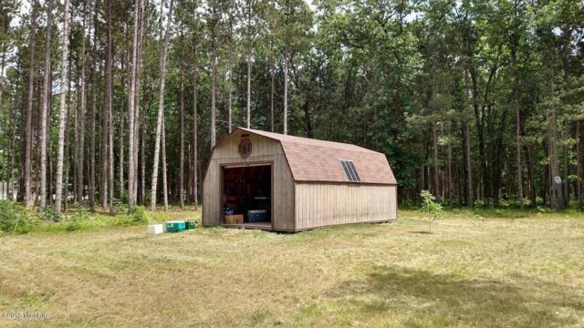 4179 Dutchman Trail, Brethren, MI 49619 (MLS #18024007) :: 42 North Realty Group