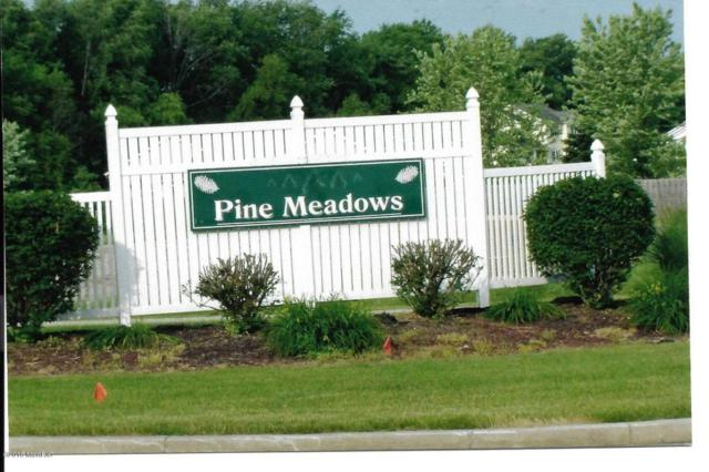 1058 N Stoneridge Drive, Plainwell, MI 49080 (MLS #18024102) :: Matt Mulder Home Selling Team