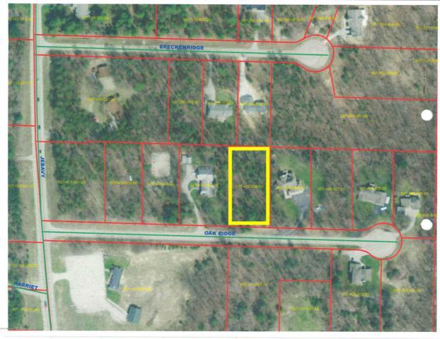 W Oak Ridge Lot #5, Ludington, MI 49431 (MLS #18024446) :: Deb Stevenson Group - Greenridge Realty