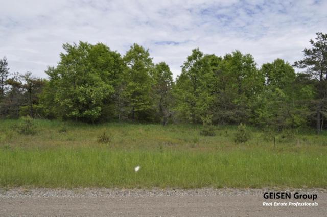 4-Par Coyote Trail, Belding, MI 48809 (MLS #18024461) :: Carlson Realtors & Development