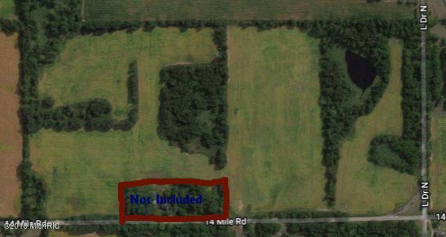 14 Mile Road, Battle Creek, MI 49014 (MLS #18024606) :: 42 North Realty Group