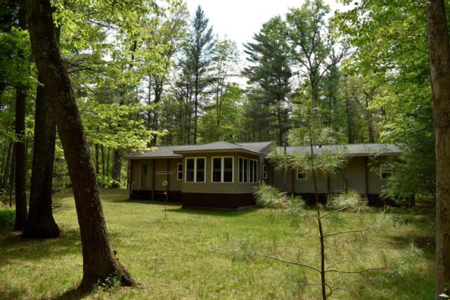4712 S Putnam Lake Drive, Baldwin, MI 49304 (MLS #18024879) :: 42 North Realty Group