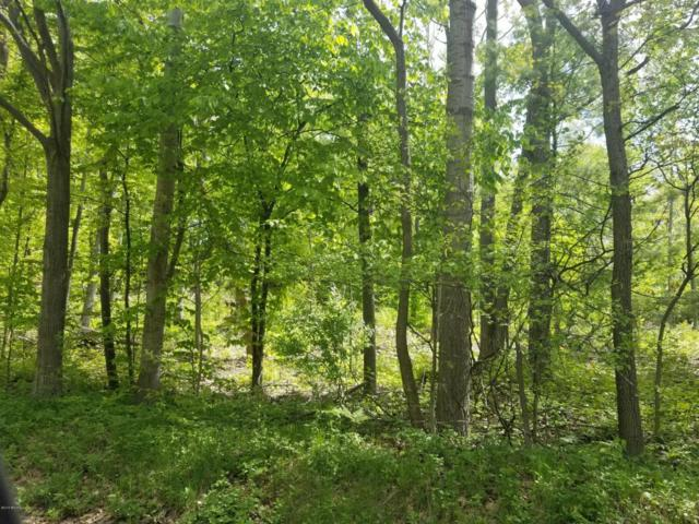 40 Acres W Pierce Rd, Shelby, MI 49455 (MLS #18025265) :: 42 North Realty Group