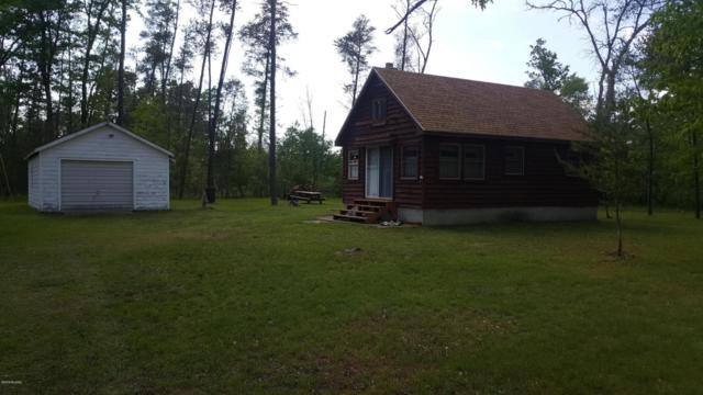 3895 N Peacock Trail Trail, Irons, MI 49644 (MLS #18025565) :: 42 North Realty Group