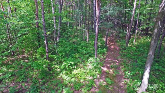 Stone Bridge Trail #12, Fennville, MI 49408 (MLS #18026197) :: 42 North Realty Group