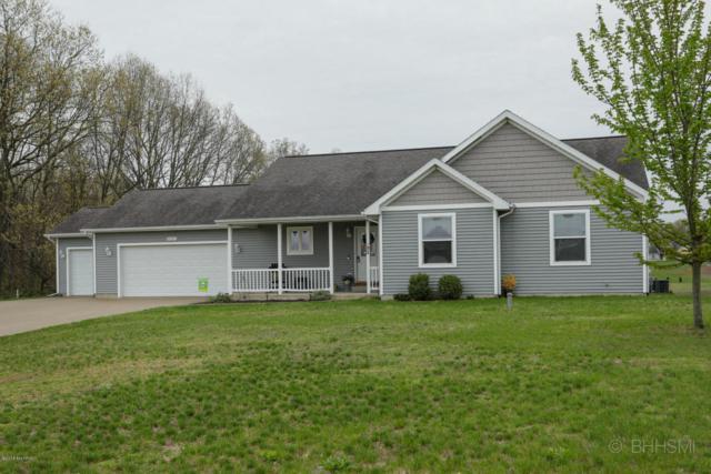 10667 Pennycress Lane, Mattawan, MI 49071 (MLS #18026529) :: Matt Mulder Home Selling Team
