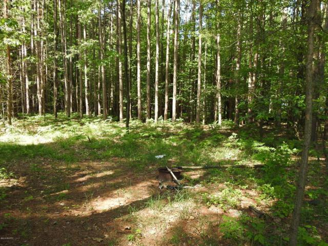 13 Acres 34th Avenue, Mears, MI 49436 (MLS #18026536) :: 42 North Realty Group