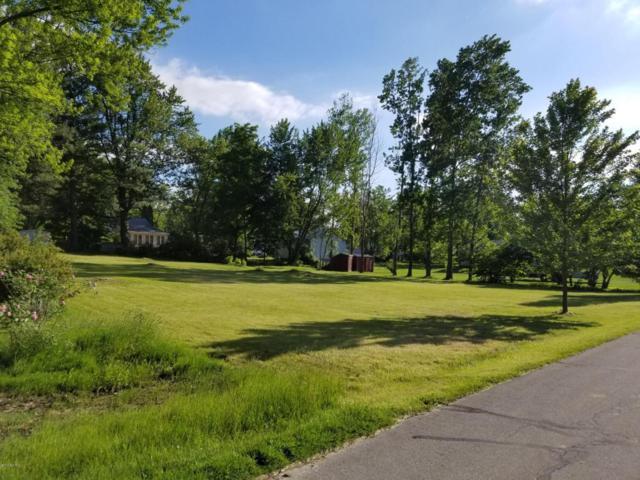 Lot 124&125 Rochester Street, Lake Odessa, MI 48849 (MLS #18026694) :: Deb Stevenson Group - Greenridge Realty