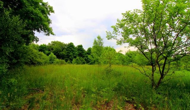 E of 3180 K Drive S, East Leroy, MI 49051 (MLS #18026721) :: 42 North Realty Group