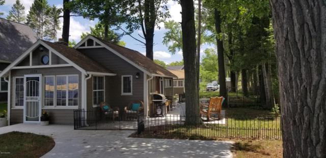 1370 N North Shore Drive, Mears, MI 49436 (MLS #18027193) :: 42 North Realty Group