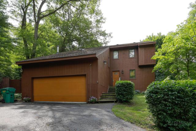 14541 Coon Hollow Road, Three Rivers, MI 49093 (MLS #18027290) :: 42 North Realty Group