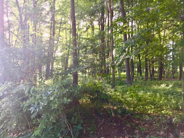 Address Not Published, Cedar Springs, MI 49319 (MLS #18027512) :: 42 North Realty Group