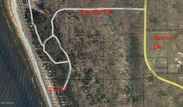 Timber Dunes Road Lot 4, Shelby, MI 49455 (MLS #18027681) :: 42 North Realty Group