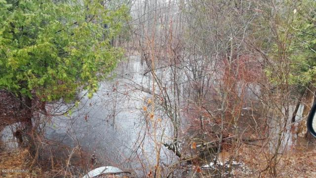 9050 Bear Creek Drive, Kaleva, MI 49645 (MLS #18027840) :: 42 North Realty Group