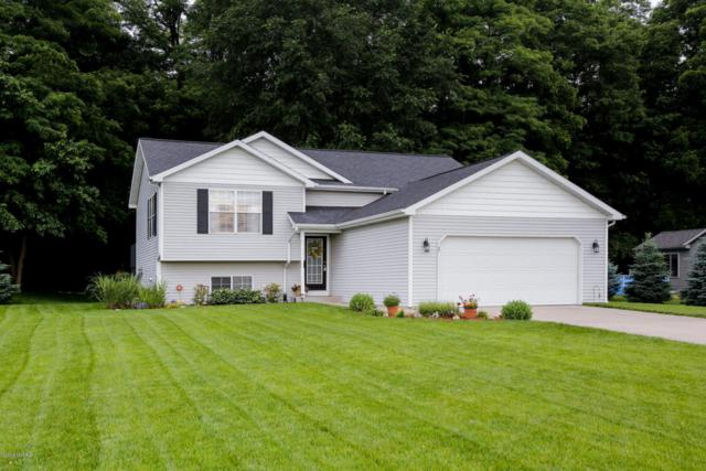 510 Fox Moor Drive, Plainwell, MI 49080 (MLS #18028284) :: Matt Mulder Home Selling Team