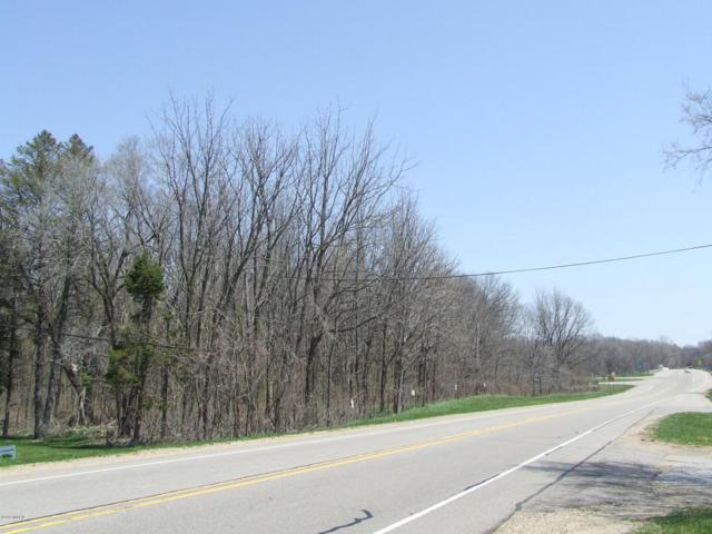 00 Red Arrow Highway, Benton Harbor, MI 49022 (MLS #18028349) :: 42 North Realty Group