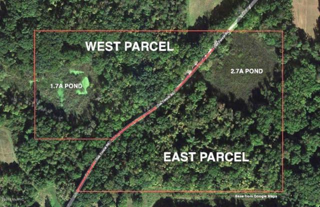 VL E PAR-EAST PARCEL Oak Forest Road, Buchanan, MI 49107 (MLS #18028411) :: 42 North Realty Group