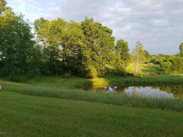 D Scenic Trail, Hastings, MI 49058 (MLS #18028500) :: 42 North Realty Group
