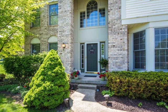 1335 Apple Creek Drive SE, Kentwood, MI 49546 (MLS #18028652) :: JH Realty Partners