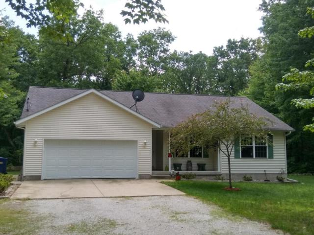 8160 W South River Drive, Grant, MI 49327 (MLS #18028699) :: 42 North Realty Group