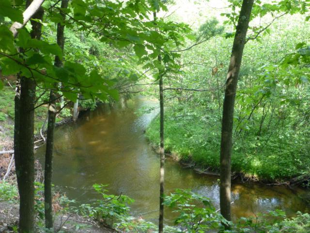 Lot 16/17 W Deer Run Road, Free Soil, MI 49411 (MLS #18029044) :: Deb Stevenson Group - Greenridge Realty