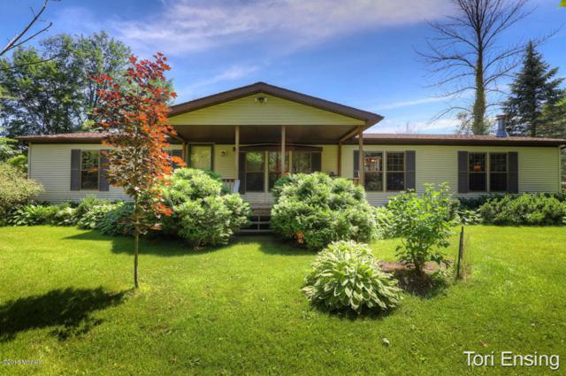 3100 Oak Drive SW, Stanton, MI 48888 (MLS #18029589) :: 42 North Realty Group