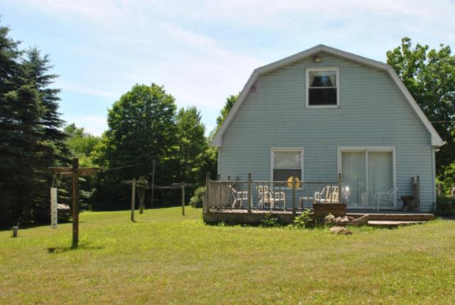 13876 170th Avenue, Leroy, MI 49655 (MLS #18029612) :: JH Realty Partners
