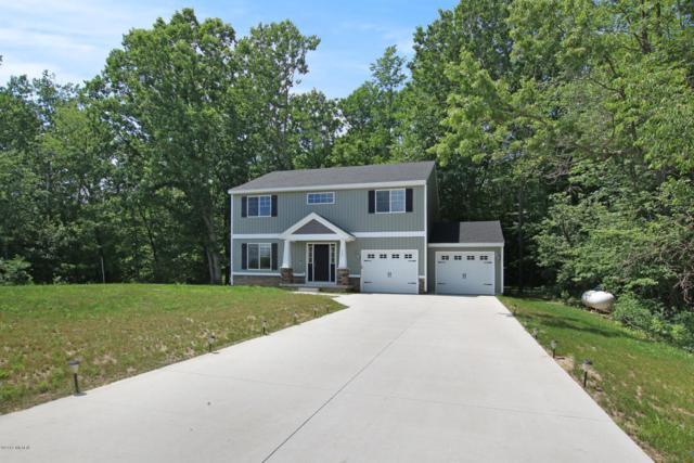 225 Andrea Drive, Sand Lake, MI 49343 (MLS #18029778) :: Carlson Realtors & Development
