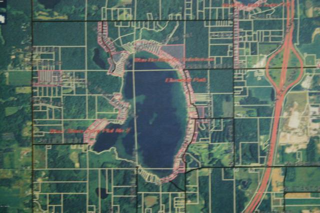 Parcel 9 Shorecrest, Pierson, MI 49339 (MLS #18029973) :: Carlson Realtors & Development