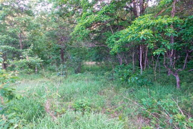 Fair Oaks Estate- Lot 169, Branch, MI 49402 (MLS #18030300) :: 42 North Realty Group