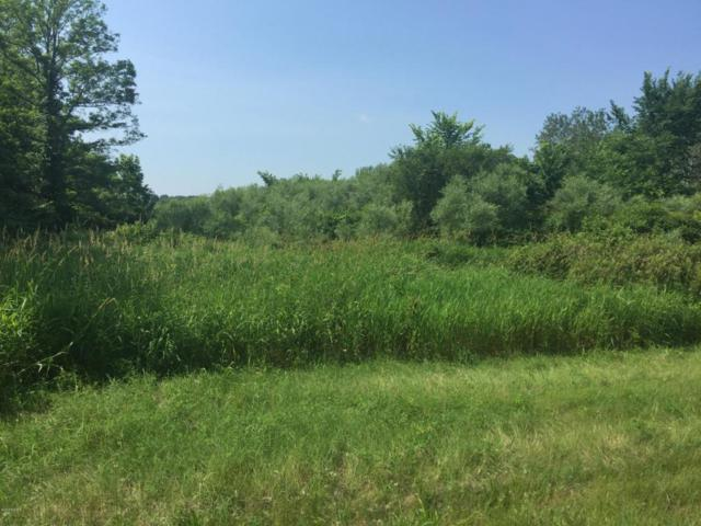 Parcel C White Oak Road, Lawton, MI 49065 (MLS #18030675) :: Carlson Realtors & Development