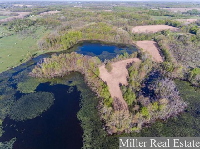 V/L Butler Road, Dowling, MI 49050 (MLS #18030799) :: Carlson Realtors & Development