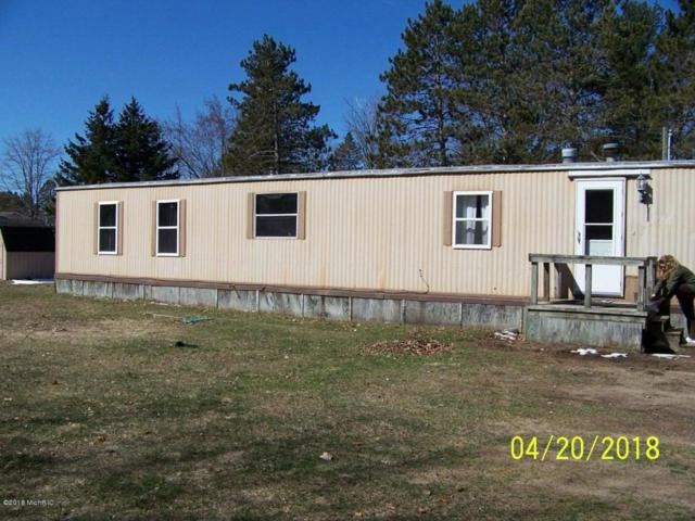 11675 187th Avenue, Stanwood, MI 49346 (MLS #18030867) :: 42 North Realty Group