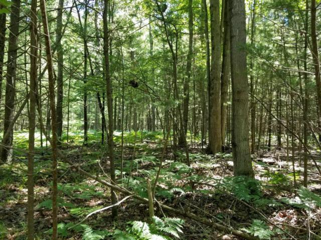 5398 RD E 5398 Road, Free Soil, MI 49411 (MLS #18030957) :: Deb Stevenson Group - Greenridge Realty