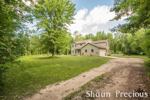 4324 W Wise Road, Sheridan, MI 48884 (MLS #18031084) :: 42 North Realty Group
