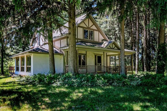 36459 Cr 390, Gobles, MI 49055 (MLS #18031235) :: JH Realty Partners