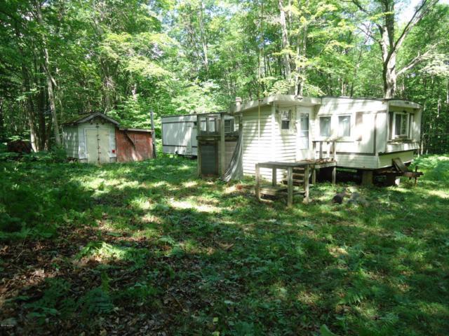 8859 E. Grandview Trail, Reed City, MI 49677 (MLS #18031425) :: Deb Stevenson Group - Greenridge Realty