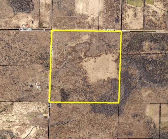 41st Street, Paw Paw, MI 49079 (MLS #18031525) :: Carlson Realtors & Development