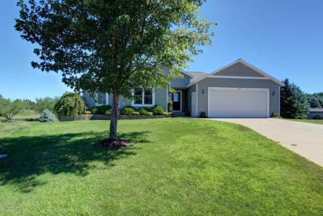 10849 Pine Cone Court, West Olive, MI 49460 (MLS #18031751) :: 42 North Realty Group