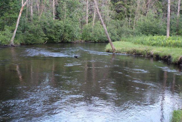Ervine Road, Free Soil, MI 49411 (MLS #18031989) :: Deb Stevenson Group - Greenridge Realty