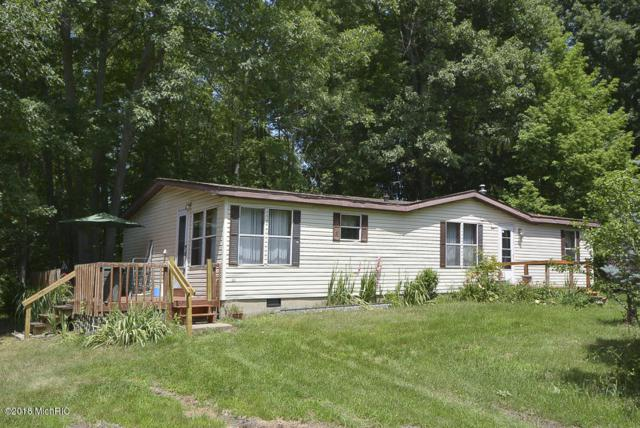 29540-CR 653, Gobles, MI 49055 (MLS #18032092) :: 42 North Realty Group