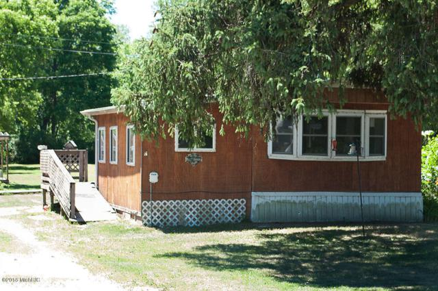 11345 5 Mile Road, Morley, MI 49336 (MLS #18032187) :: Carlson Realtors & Development