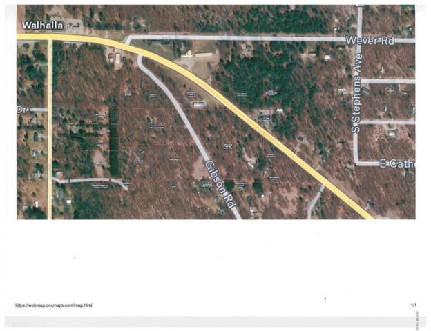 Gibson Road, Walhalla, MI 49458 (MLS #18032209) :: 42 North Realty Group
