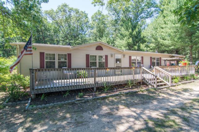2845 Hickory Avenue, White Cloud, MI 49349 (MLS #18032322) :: JH Realty Partners