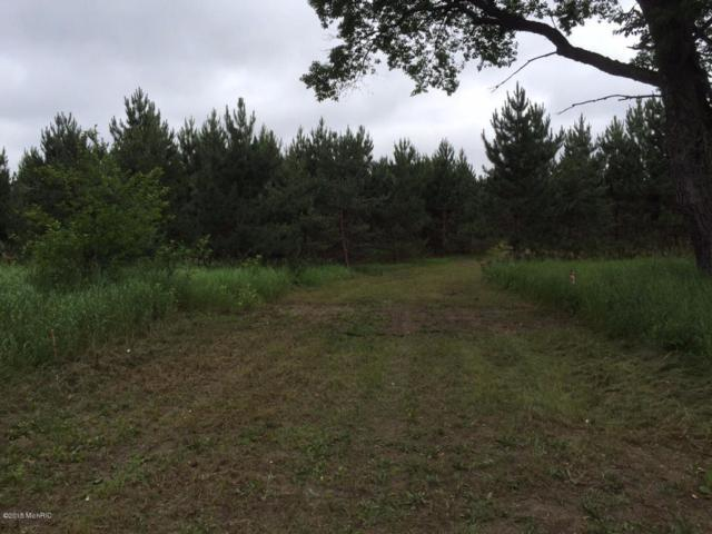 0 E Free Soil Road, Free Soil, MI 49411 (MLS #18032348) :: JH Realty Partners
