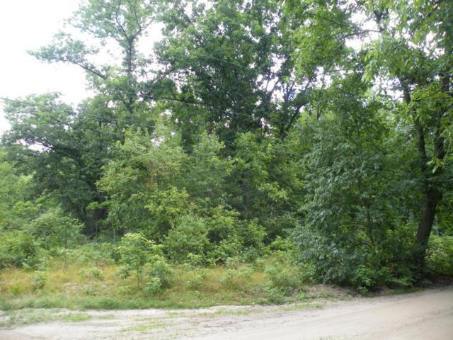 0 W Meinert Road, Montague, MI 49437 (MLS #18032472) :: 42 North Realty Group