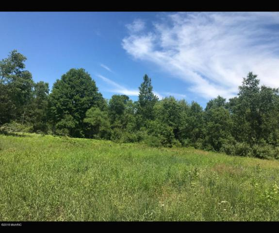 N Centerline Road, White Cloud, MI 49349 (MLS #18032500) :: 42 North Realty Group