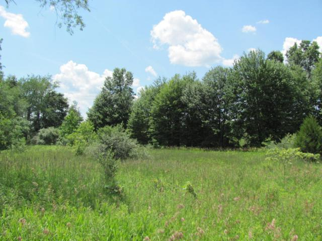 16459 5th Street S 10 Acres, Schoolcraft, MI 49087 (MLS #18032552) :: Carlson Realtors & Development