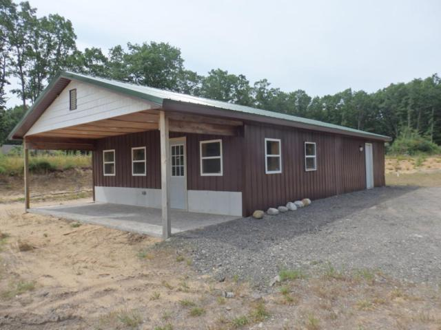 895 Caberfae Highway, Eastlake, MI 49626 (MLS #18032915) :: Carlson Realtors & Development