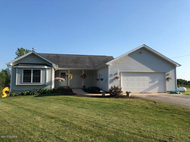 5969 Sayles Road, Saranac, MI 48881 (MLS #18032972) :: Carlson Realtors & Development
